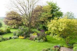 Pleasance Farm B&B gardens